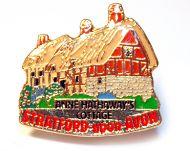 Anne Hathaways pin badge